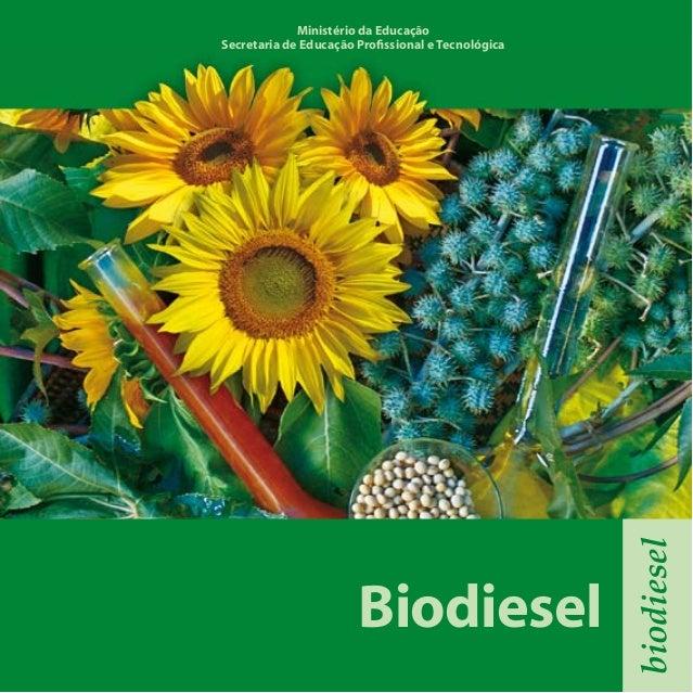 Biodiesel biodiesel Ministério da Educação Secretaria de Educação Profissional e Tecnológica