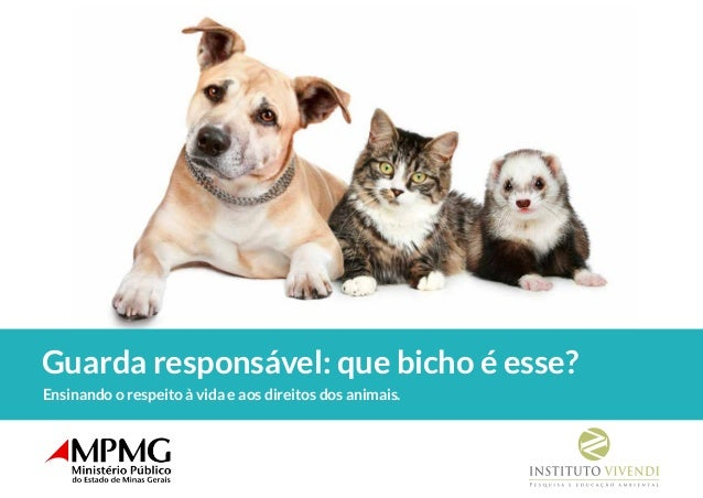 Ensinando o respeito à vida e aos direitos dos animais. Guarda responsável: que bicho é esse?