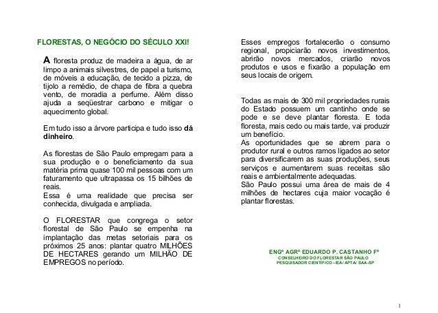 FLORESTAS, O NEGÓCIO DO SÉCULO XXI! A floresta produz de madeira a água, de ar limpo a animais silvestres, de papel a turi...