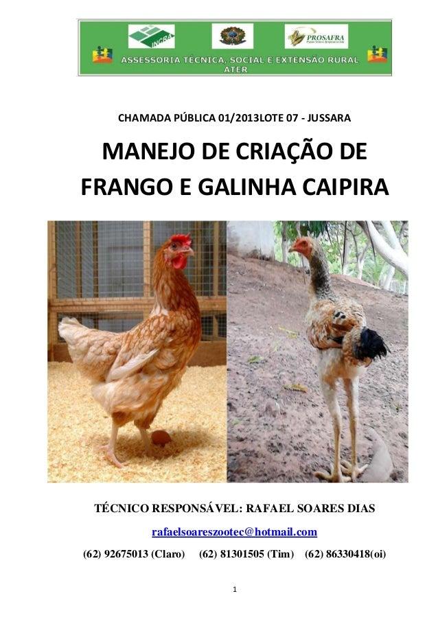 1 CHAMADA PÚBLICA 01/2013LOTE 07 - JUSSARA MANEJO DE CRIAÇÃO DE FRANGO E GALINHA CAIPIRA TÉCNICO RESPONSÁVEL: RAFAEL SOARE...