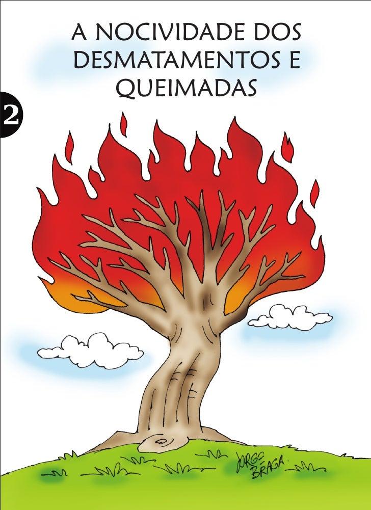 A NOCIVIDADE DOS DESMATAMENTOS E    QUEIMADAS