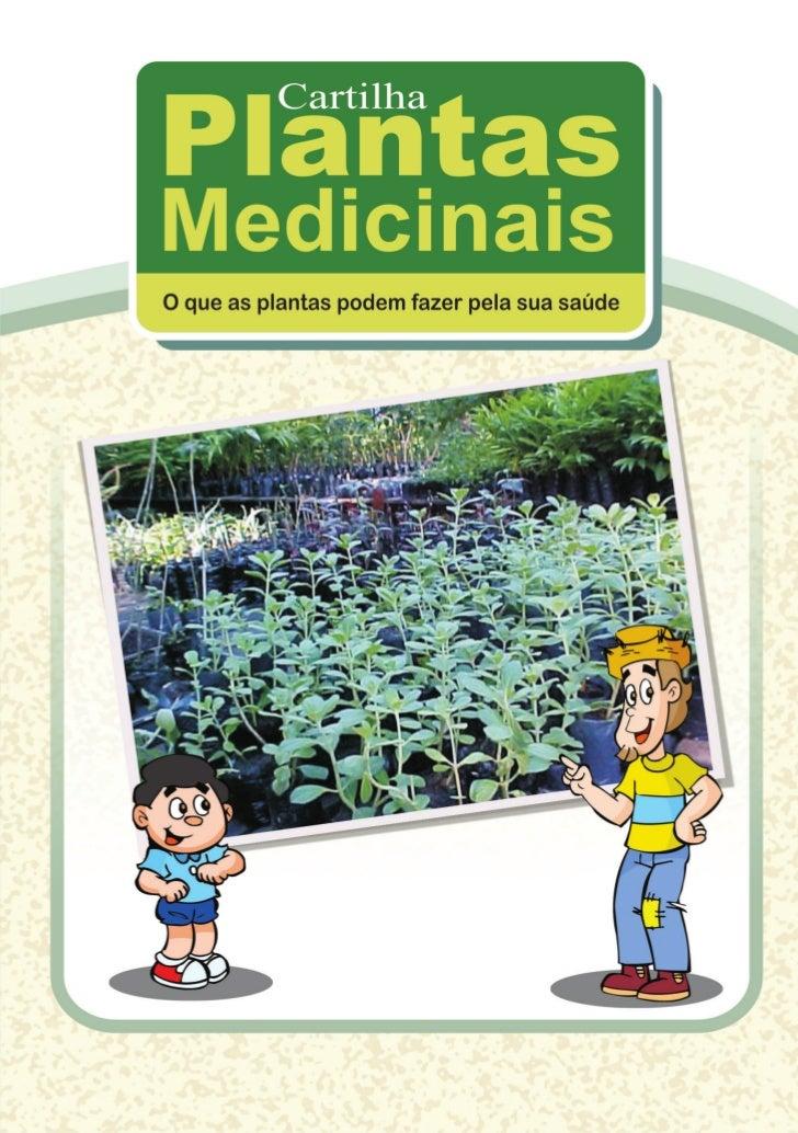 Cartilha Plantas Medicinais         Fortaleza, Dezembro de 2009