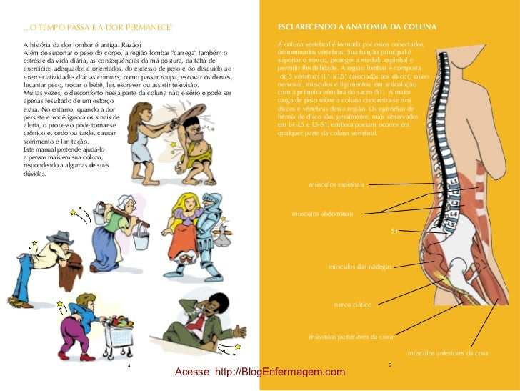 Cartilha prevencao da hérnia lombar Slide 3