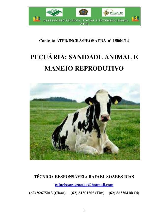 Contrato ATER/INCRA/PROSAFRA nº 15000/14  PECUÁRIA: SANIDADE ANIMAL E  MANEJO REPRODUTIVO  TÉCNICO RESPONSÁVEL: RAFAEL SOA...