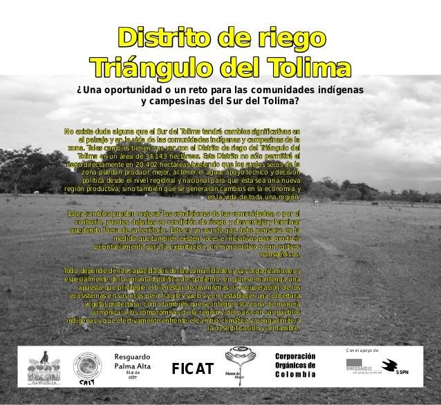 Distrito de riego Triángulo del Tolima Distrito de riego Triángulo del Tolima ¿Una oportunidad o un reto para las comunida...