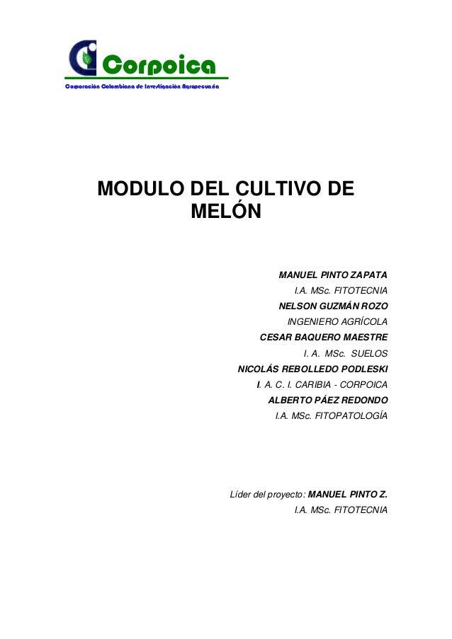 MODULO DEL CULTIVO DE MELÓN MANUEL PINTO ZAPATA I.A. MSc. FITOTECNIA NELSON GUZMÁN ROZO INGENIERO AGRÍCOLA CESAR BAQUERO M...