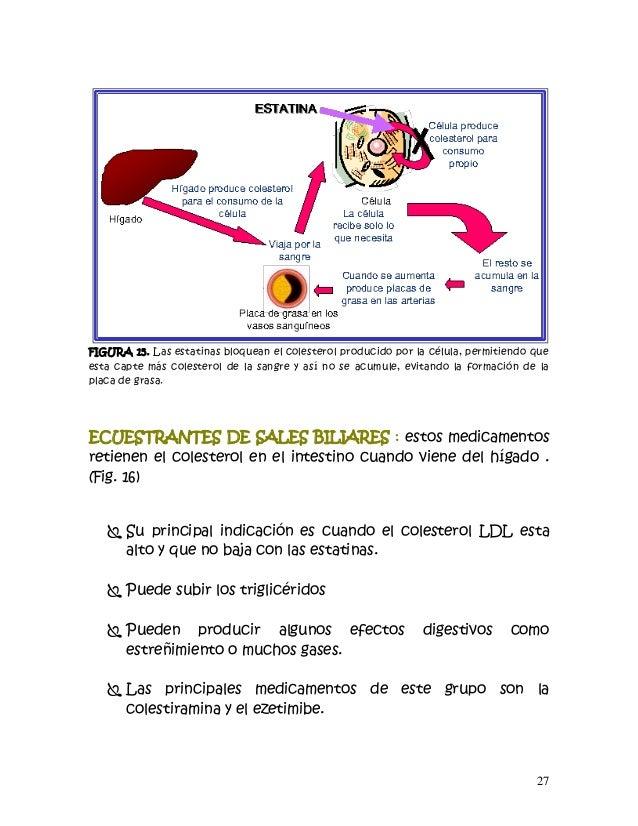 Cartilla de riesgo cardiovascular version completa dr