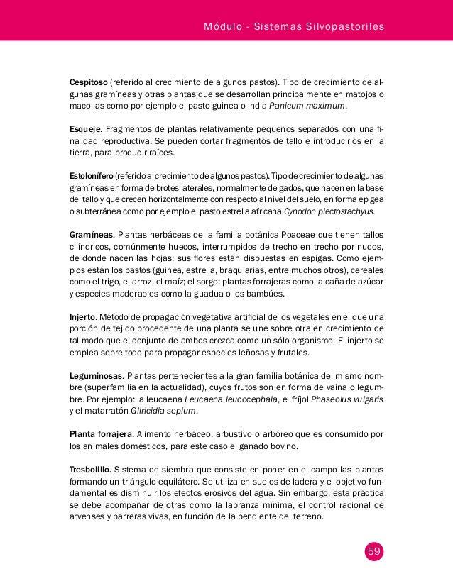 Cartilla modulo sistemas_silvopastoriles