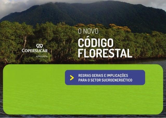 2 CRÉDITOS Realização Coordenação Marina Souza Dias Guyot (ecosSISTEMAS) Autores Marina Souza Dias Guyot (ecosSISTEMAS) Cí...