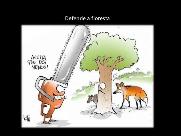 Defende a floresta