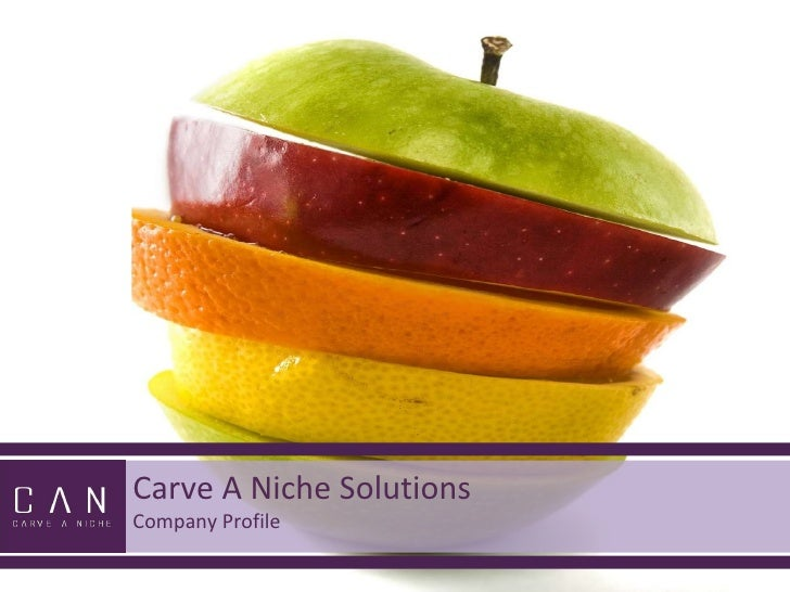 Carve A Niche Solutions Company Profile