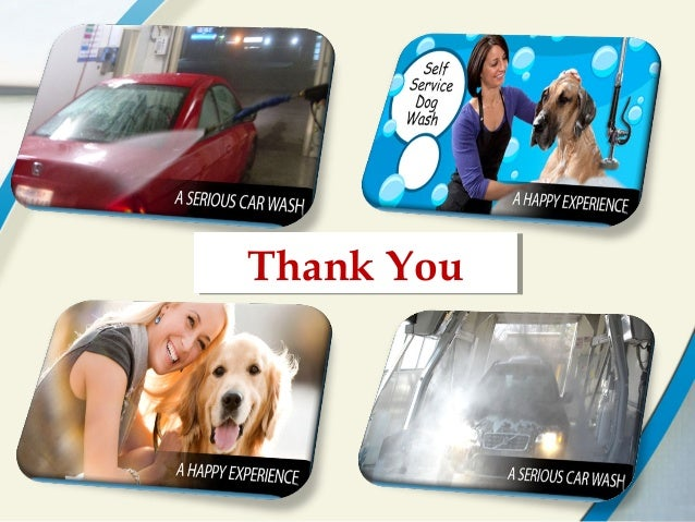 Car wash with dog and pet wash in calgary at happy bays thank youthank you solutioingenieria Choice Image