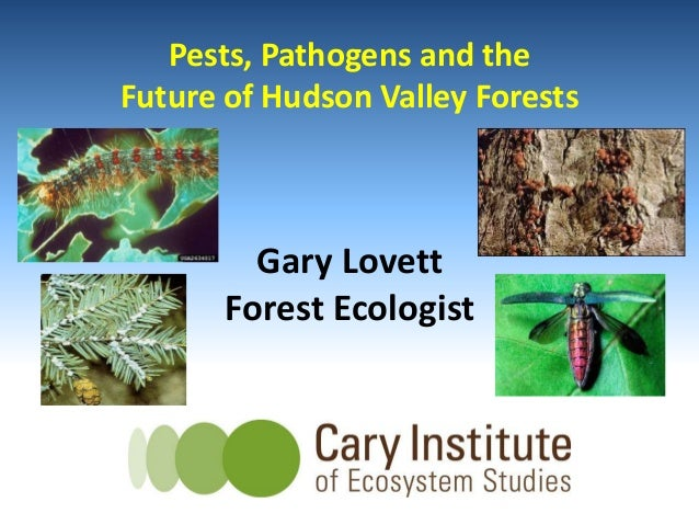 Gary Lovett Forest Ecologist Pests, Pathogens and the Future of Hudson Valley Forests