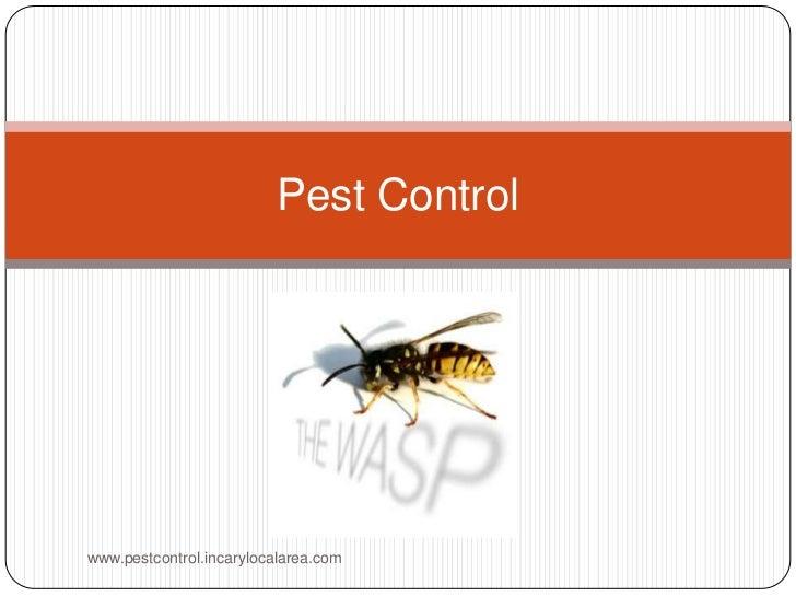 Pest Control<br />www.pestcontrol.incarylocalarea.com<br />