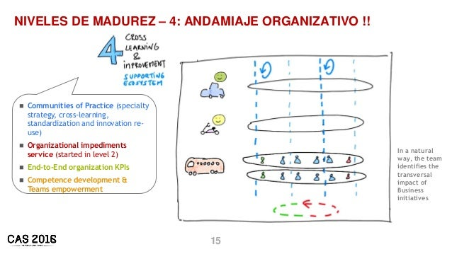 15 NIVELES DE MADUREZ – 4: ANDAMIAJE ORGANIZATIVO !!  Communities of Practice (specialty strategy, cross-learning, standa...