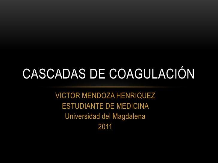 CASCADAS DE COAGULACIÓN    VICTOR MENDOZA HENRIQUEZ      ESTUDIANTE DE MEDICINA       Universidad del Magdalena           ...