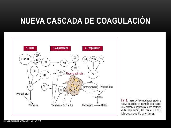 Presentacion de adp en el salon de barcelona - 3 part 10