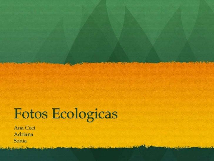 Fotos Ecologicas<br />Ana Ceci<br />Adriana<br />Sonia <br />