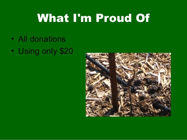 What Im Proud Of• All donations• Using only $20