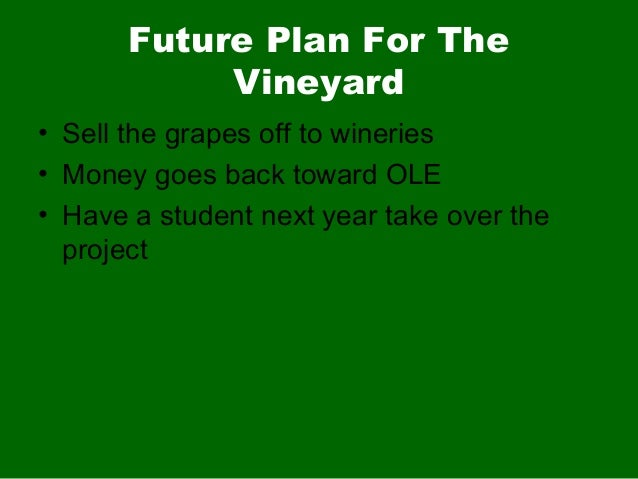 Future Plan For TheVineyard• Sell the grapes off to wineries• Money goes back toward OLE• Have a student next year take ov...