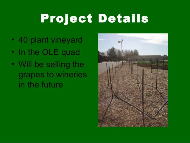 Project Details• 40 plant vineyard• In the OLE quad• Will be selling thegrapes to wineriesin the future
