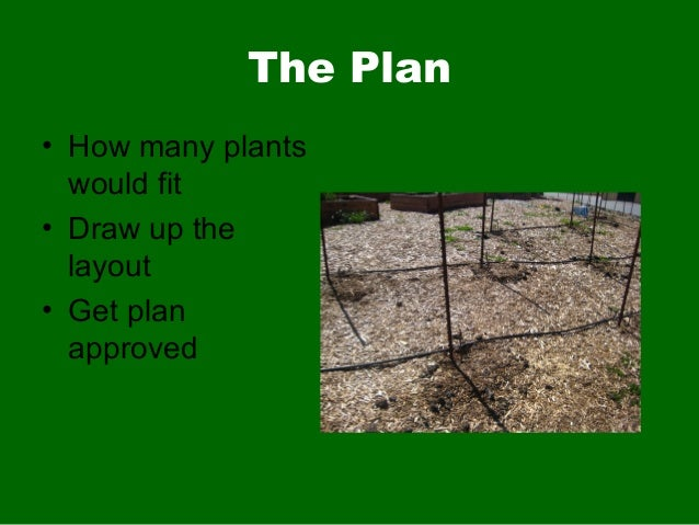 The Plan• How many plantswould fit• Draw up thelayout• Get planapproved