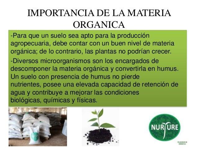 Casan sa linea nurture for Importancia de los suelos