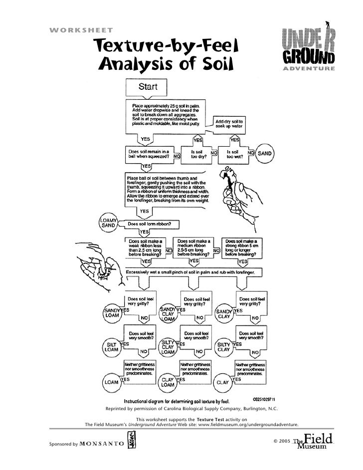 WORKSHEET                    Texture-by-Feel                   Analysis of Soil                            Reprinted by pe...
