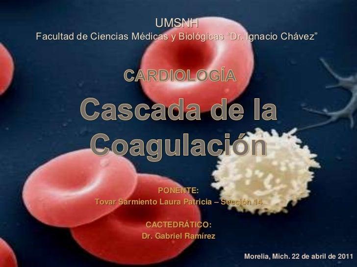 """UMSNHFacultad de Ciencias Médicas y Biológicas """"Dr. Ignacio Chávez""""                           PONENTE:            Tovar Sa..."""