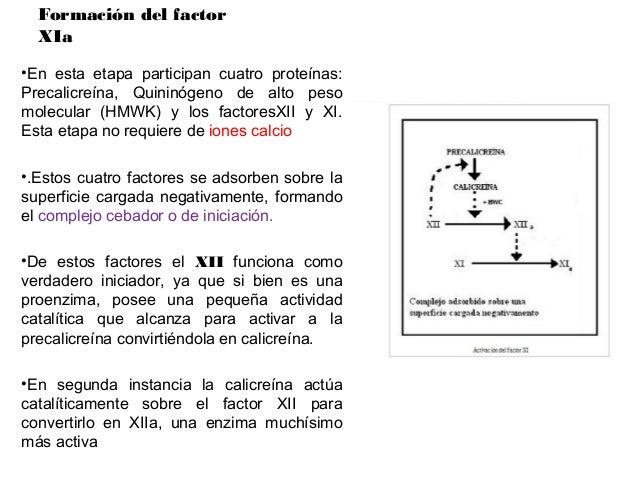 Formación del factorIXaEl factor IX seencuentra en elplasma como unaproenzima.       Enpresencia de ionesCa2+ el factor XI...