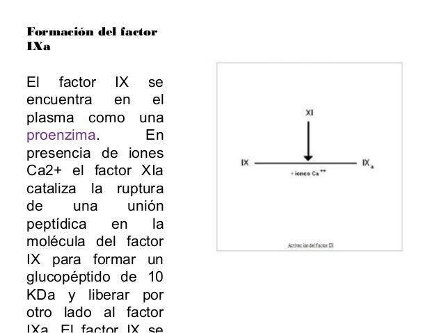 Formación del factorXa•Primero se unen los factores X yIXa a la membrana y luego se uneel VIII. El factor VIII es en reali...
