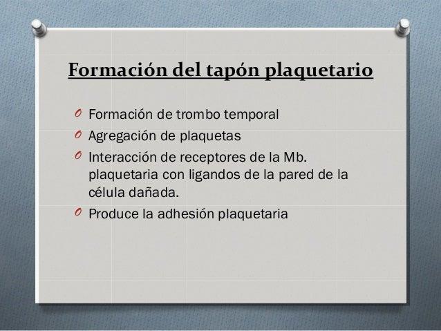 Colágeno                FibronectinaAdhesión       Factor Von Willebrand                Laminina              Vitronectina...