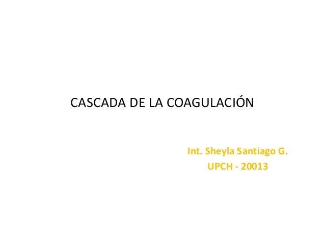 CASCADA DE LA COAGULACIÓN Int. Sheyla Santiago G. UPCH - 20013