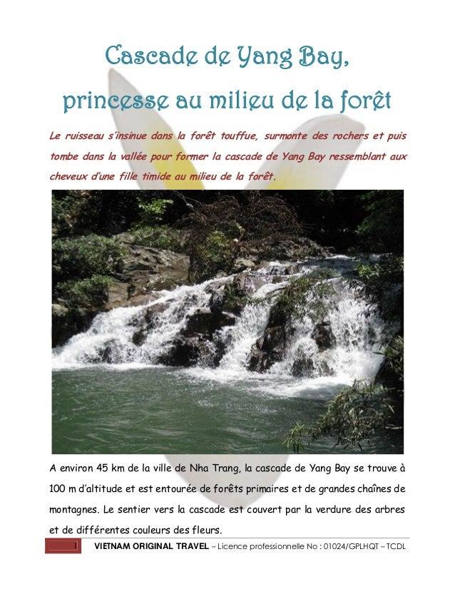 Cascade de Yang Bay, princesse au milieu de la forêt Le ruisseau s'insinue dans la forêt touffue, surmonte des rochers et ...