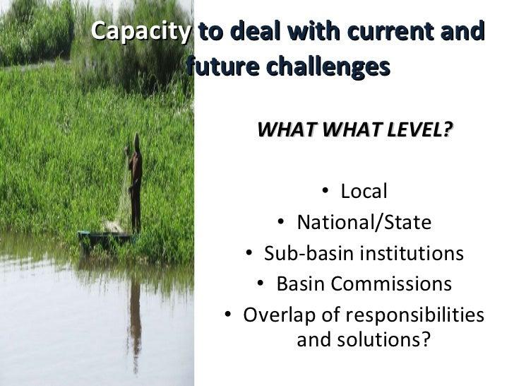 Capacity   to deal with current and future challenges <ul><li>WHAT WHAT LEVEL? </li></ul><ul><li>Local </li></ul><ul><li>N...