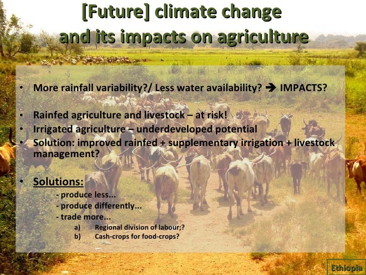 [Future] climate change  and its impacts on agriculture <ul><li>More rainfall variability?/ Less water availability?    I...