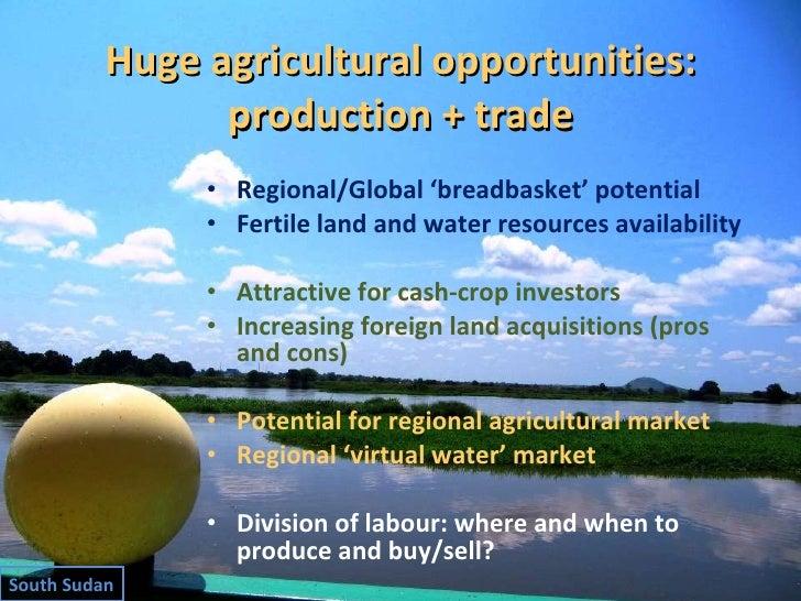 Huge agricultural opportunities: production + trade <ul><li>Regional/Global 'breadbasket' potential </li></ul><ul><li>Fert...