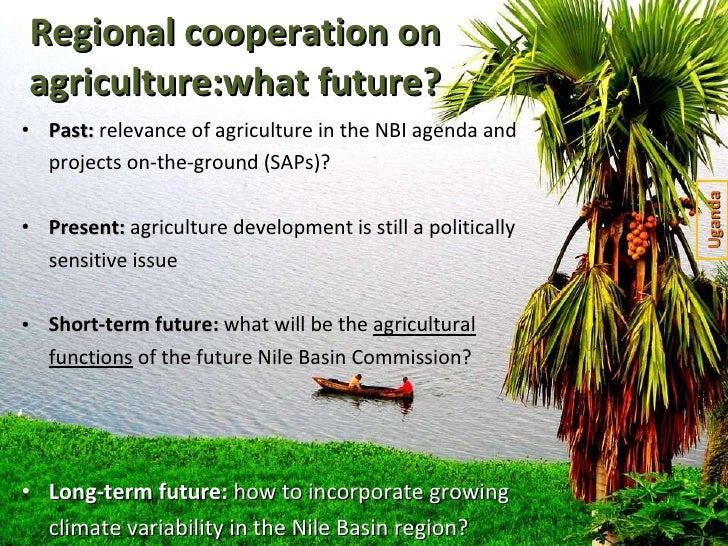 Regional cooperation on agriculture:what future? <ul><li>Past:  relevance of agriculture in the NBI agenda and projects on...