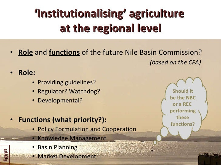 ' Institutionalising' agriculture  at the regional level <ul><li>Role   and  functions  of the future Nile Basin Commissio...