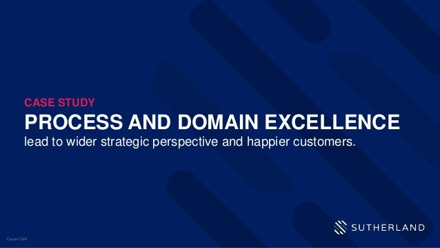PROCESS AND DOMAIN EXCELLENCE lead to wider strategic perspective and happier customers. CASE STUDY Case-1024
