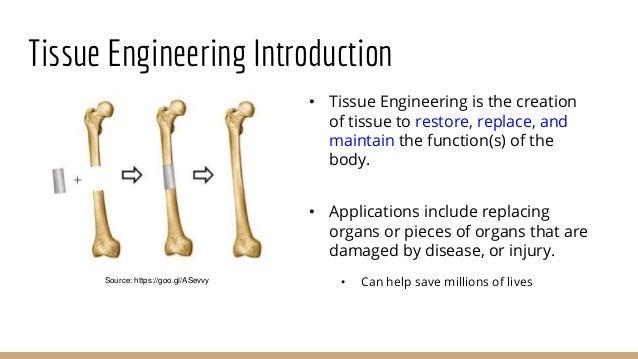 Case study 2 - Tissue Engineering Scaffold