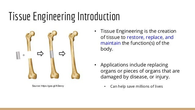 types of scaffolds in tissue engineering Case study 2 - Tissue Engineering Scaffold