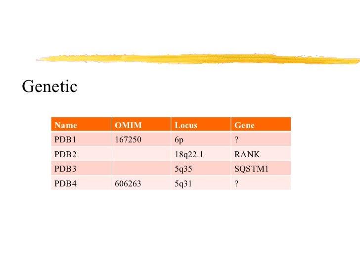 <ul><li>Genetic </li></ul>Name OMIM Locus Gene PDB1 167250 6p ? PDB2 18q22.1 RANK PDB3 5q35 SQSTM1 PDB4 606263 5q31 ?