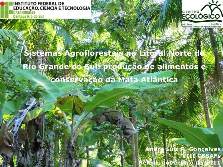 Sistemas Agroflorestais no Litoral Norte doRio Grande do Sul: produção de alimentos e      conservação da Mata Atlântica  ...