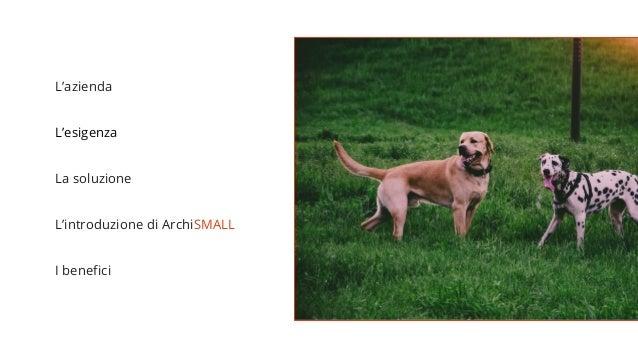 ArchiSMALL per Hello Dog Cinofilia | Case History Slide 2