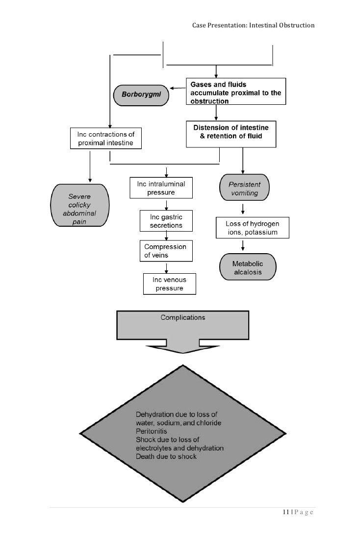 Case Presentation: Intestinal Obstruction                              11 | P a g e