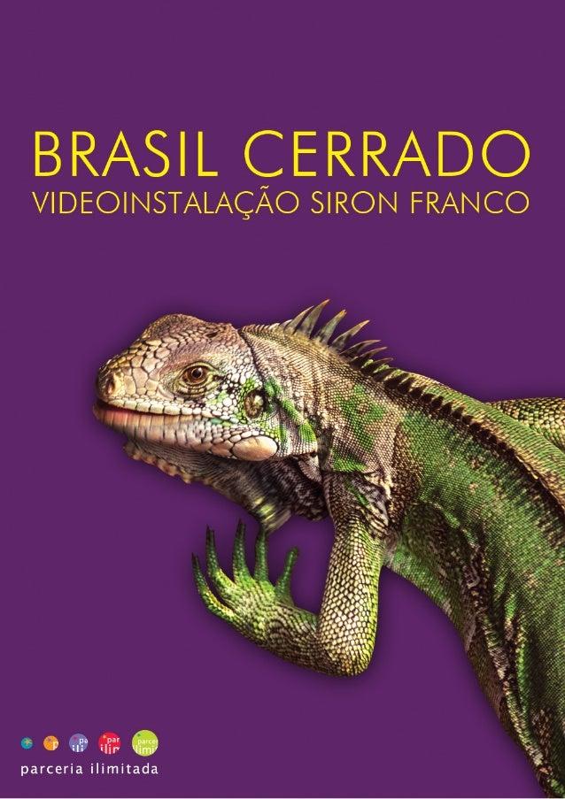 CASE BRASIL CERRADO: VIDEOINSTALAÇÃO SIRON FRANCOCLIENTE: Ministério do Meio Ambiente – Governo FederalPATROCÍNIO: COCA CO...