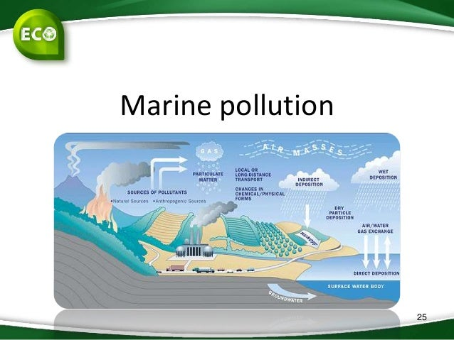 exporting pollution case study Consider the exporting pollution case how important is caring for the environment compared to profit and economic expansion  the hints and case study in the link.