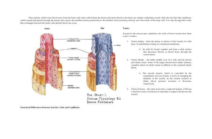 Case study 22 type 1 diabetes mellitus