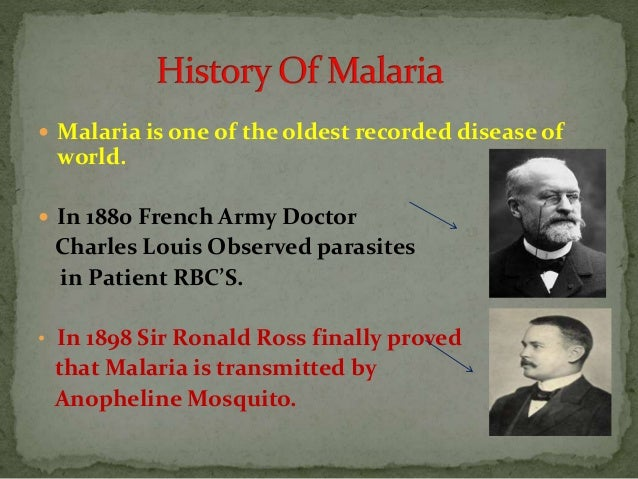 Malaria Safe Case Studies | Malaria Free Future